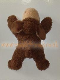 12cm Brown Magnici