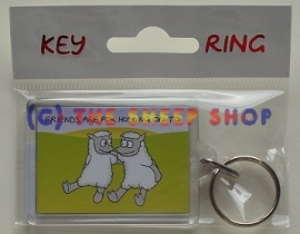 Friends are for holding onto Keyring