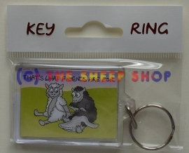 Thats what friends are for Keyring