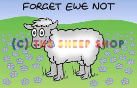 Forget-Ewe-Not Magnet